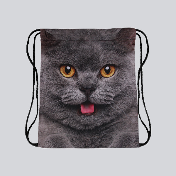 Gymsac - Katze Heiko